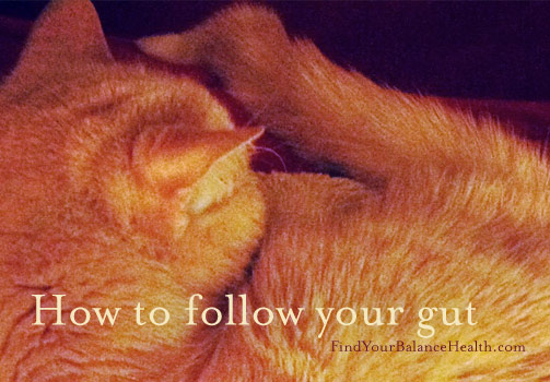 follow your gut