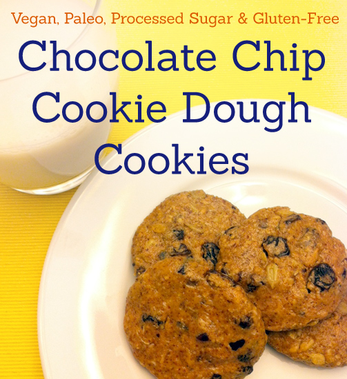Vegan, Paleo Chocolate Chip Cookie